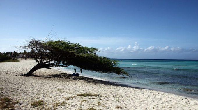 Karaiby z Berlina: Aruba, Bonaire, Curacao za 2100 zł RT (KLM)